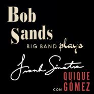 BSBB Plays Sinatra.png