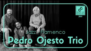 Imagen Blog Pedro Ojesto Trio